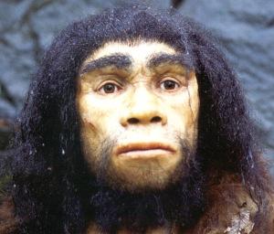 homo.heidelbergensis.a